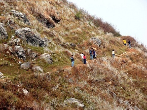 Hikers on the MOVE