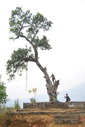 A time for fun As Rajiv stunts as a gynmastic player in nuwakot tree
