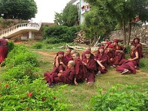 The buddhists - they work,learn,practice,live