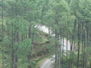 Motor road to Nagarkot seen from our hiking trail