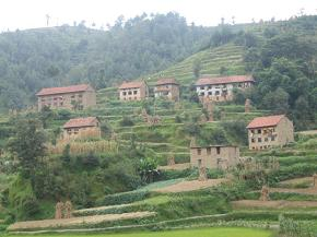 Kuncha village past Gahate village