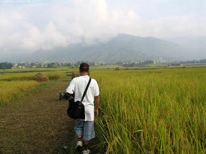 Surendra walking on Sundarijal paddy fields