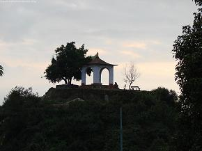 Temple and tree