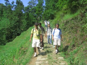 30. Here we go team surrounded by green nature