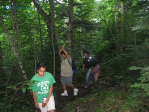 61. Way to Mount Adams USA has deep jungle forest