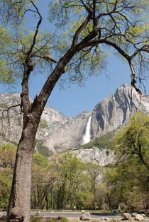 Lower Yosemite Waterfall