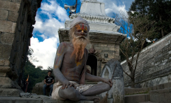 Sadhus and Shivaratri