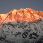 Annapurna I at sunrise (Photo: Billa)