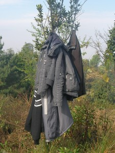 The jacket growing tree