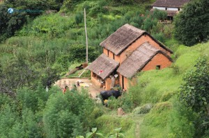 27. On the way, a typical village house