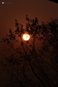 65. The red Sun