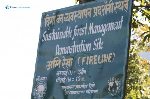 45. Fire line sign.