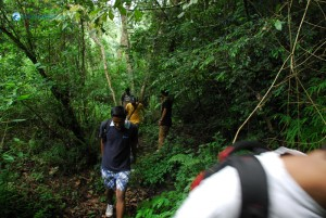 39. Somewhere in the middle of the jungle