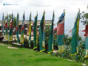 20. Flags representing Buddhism