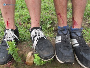 23. Hikers under attack