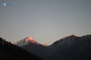 12. Gold dust on the mountain