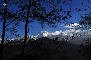 22. Morning Annapurna view