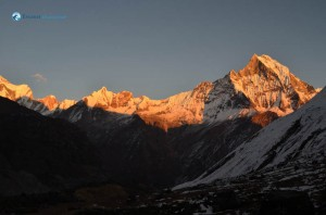Evening glory at Machhapuchhre