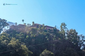 44. Gorkha darbar behind the trees