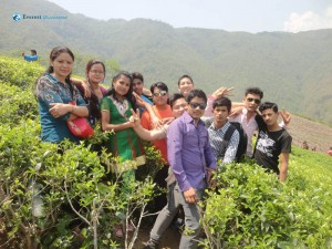 Hiking from Zero Kilo to Everest Tea Garden