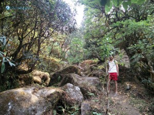 12. Lava Kafle Hiking Nature's Lap