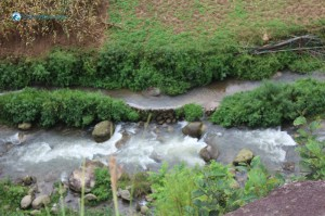 66. Mystrious River