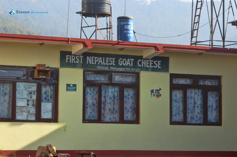 Cheese factory of Chitlang