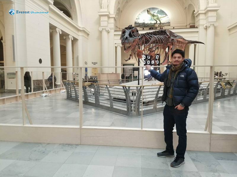 With Tyrannosaurus (The Sue) Field Museum Chicago