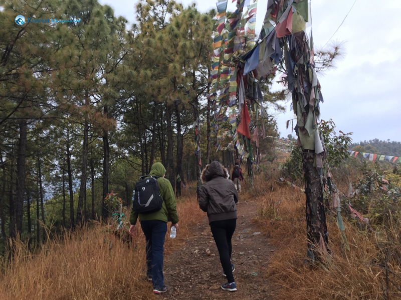 10 The Prayer Flags Guide The Way