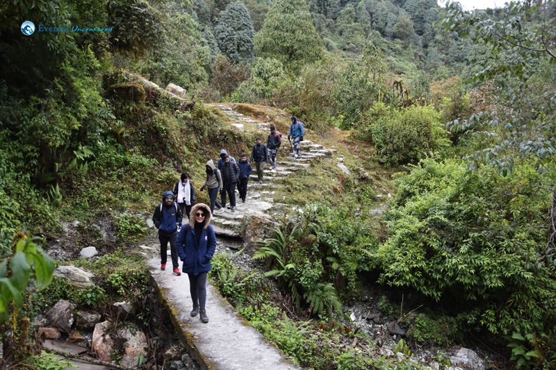 19. Obidient Hikers Walking In A Line