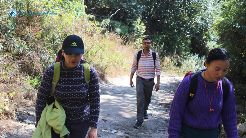 6.the Hikers